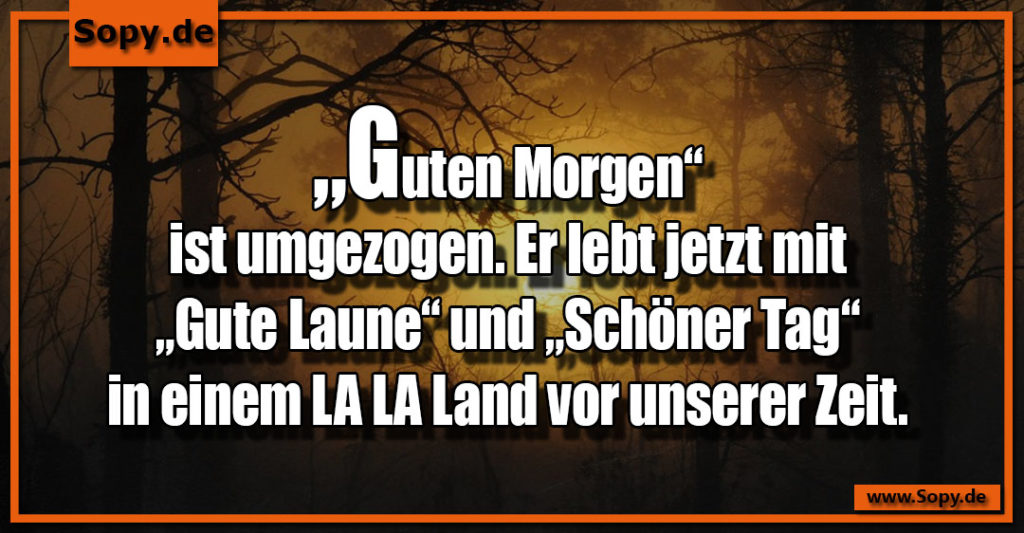 Sopy Lustige La La Land Sprüche Spruchbilder Zitate