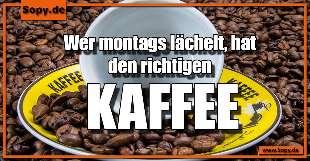 richtigen Kaffee