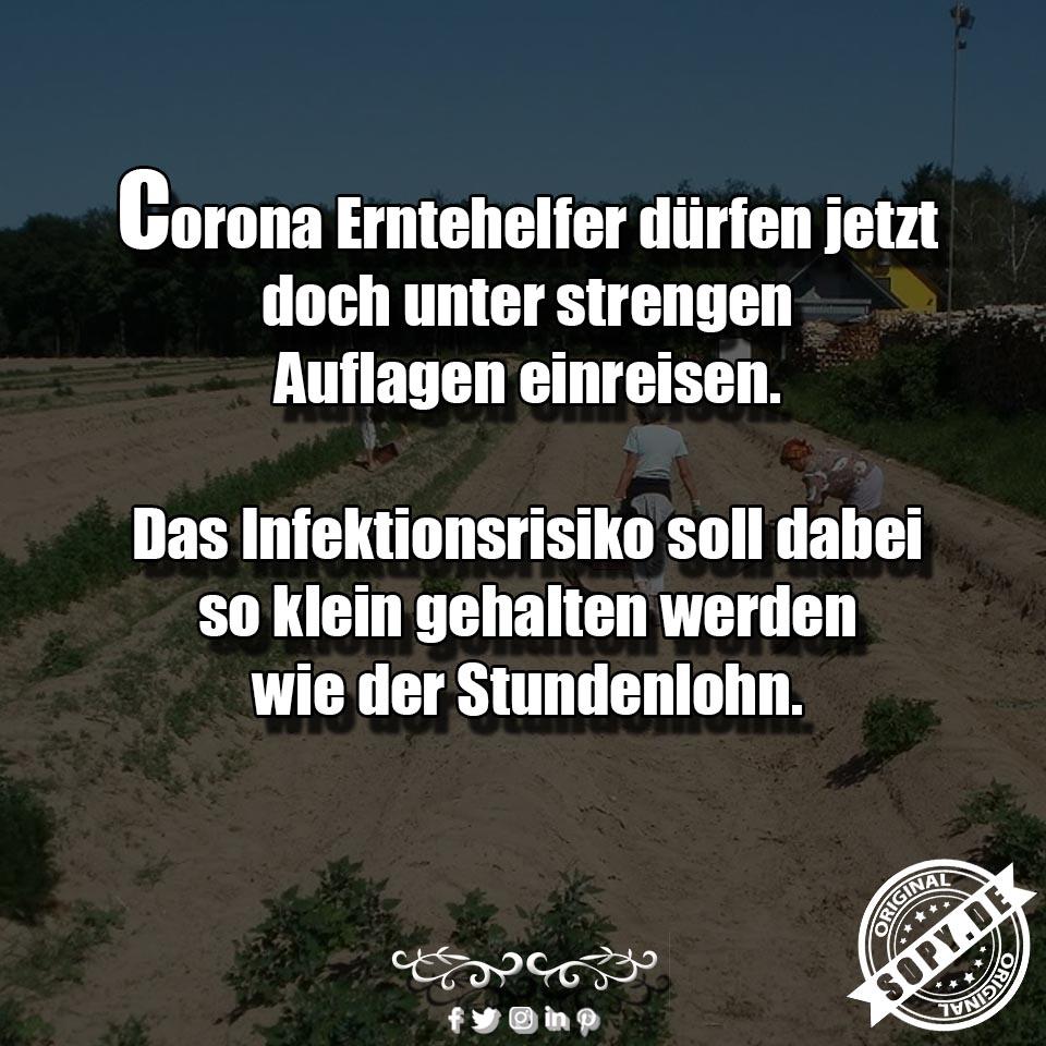 Corona Erntehelfer